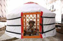 Small Yurt