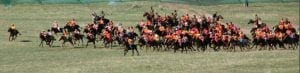 Course race of Swift Horse