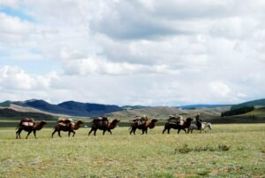 live stock breeders moving as a nomadic people