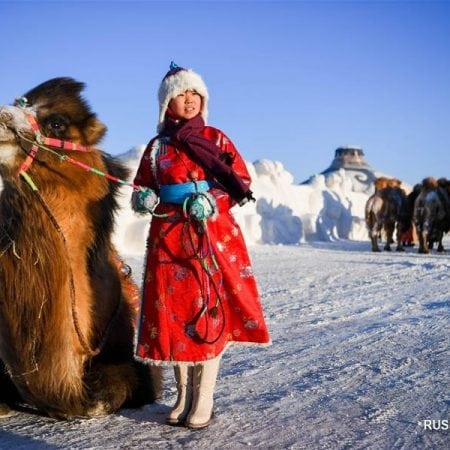 Festival of the Mongolian Camel Herders
