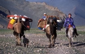 Families moving by camels