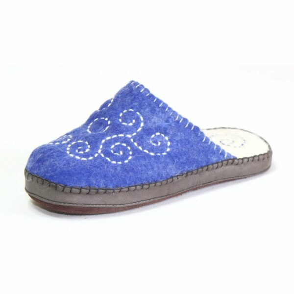Side of Blue Slipper