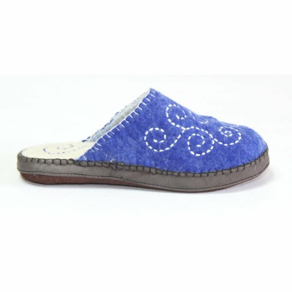Right Side of Blue Slipper