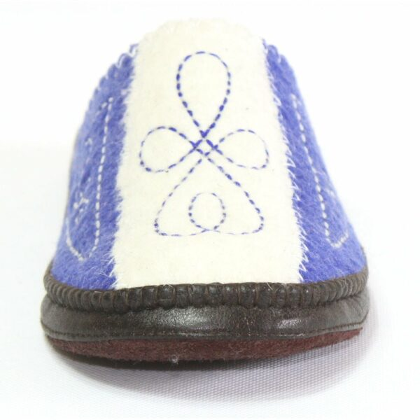 Front of White and Blue Slipper