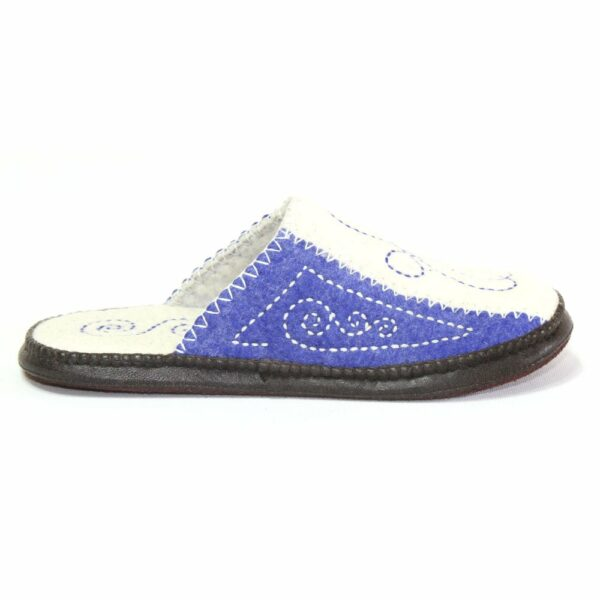 Right Side of White and Blue Slipper