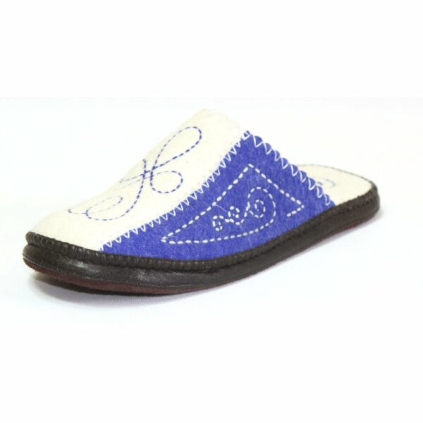 Side of White and Blue Slipper