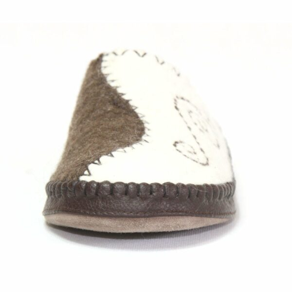Front of White and Brown Slipper
