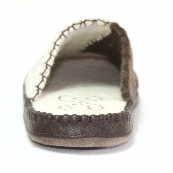 North Side of White and Brown Slipper