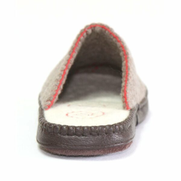 North of Grey Striped Slipper