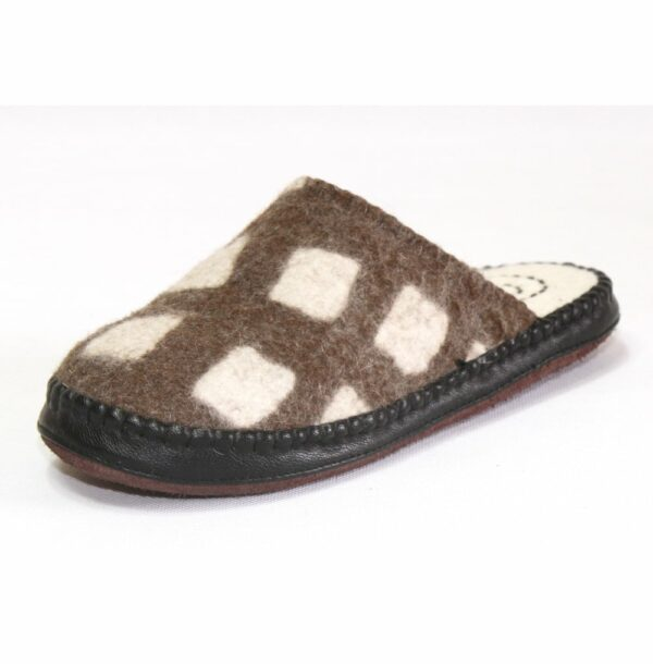 Side of Brown Slipper
