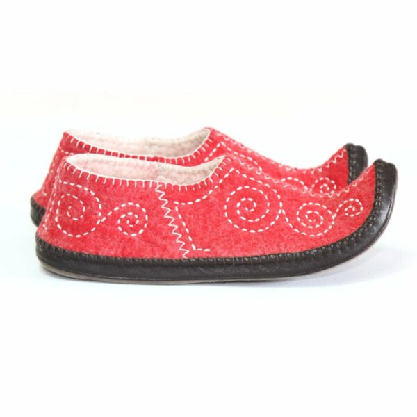 Right Side of Red slipper