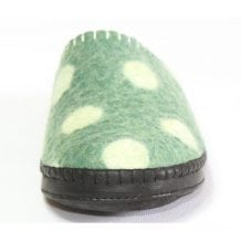 Front of Spotted Green Slipper