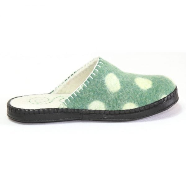 Right Side of Spotted Slipper