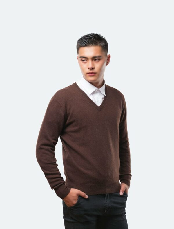 Men's Brown V-Neck